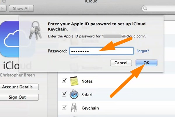 Backup keychain in iCloud - input the password
